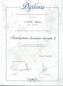 Instructeursdiploma; Niveau 3 - Dressuur