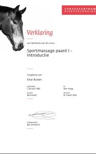Sportmassage paard; module I